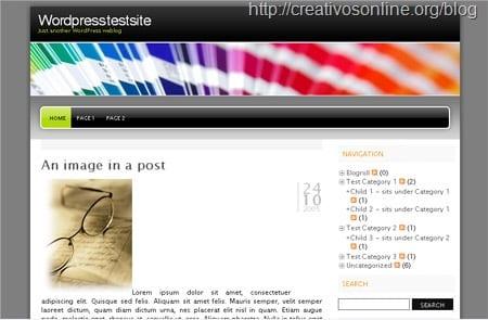 49 themes para wordpress más descargados