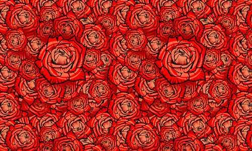 Más de 100 patrones de rosas