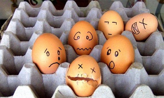 30 fotografías de huevos graciosas