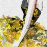 Delpozo watercolor