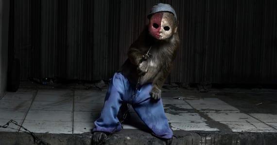 monos de Perttu Saksa