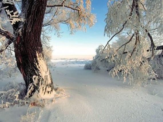 tutorial-9-consejos-para-fotografiar-en-invierno-00