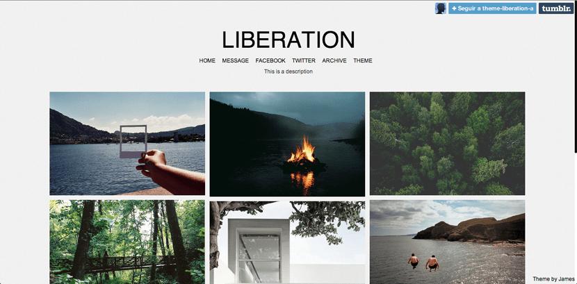 Liberation, plantilla para Tumblr