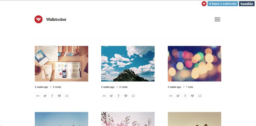 Wallstocker, plantilla simple de Tumblr