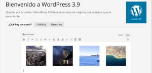 Análisis de WordPress