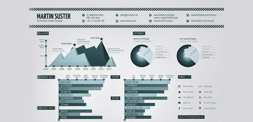 Curriculum convertido en infografía