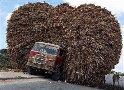 camion-de-cereales