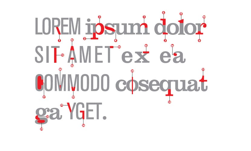 anatomia-tipografica