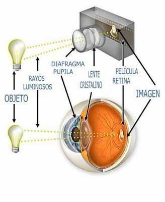 camara-ojo