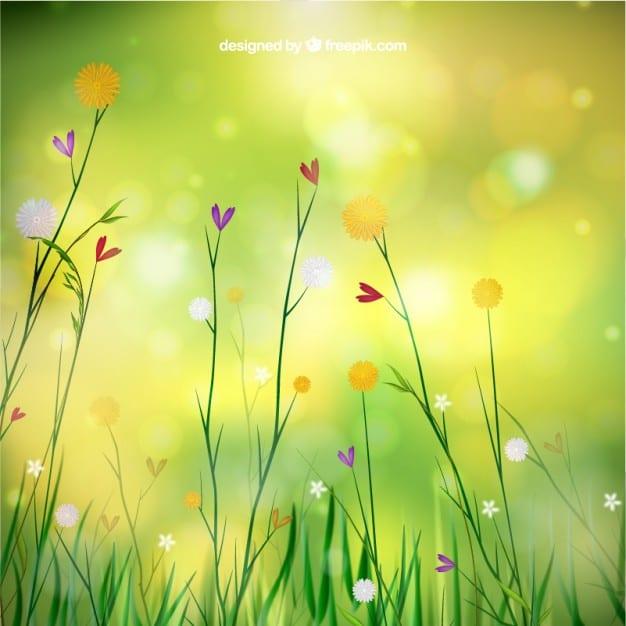 fondo-de-primavera-con-flores_23-2147507395