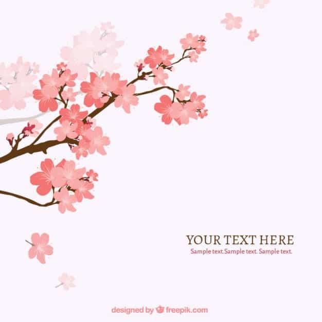 fondo-de-rama-de-arbol-del-cerezo-en-flor_23-2147506915