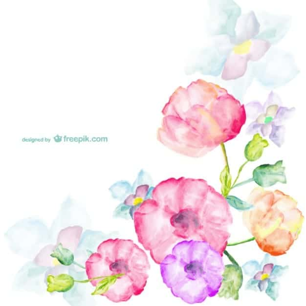 tarjeta-de-flores-de-acuarela_23-2147493155