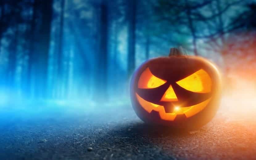 calabaza bosque encantado Halloween