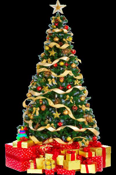 arboles-navidad-png01