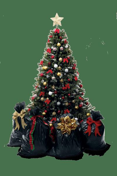 arboles-navidad-png05