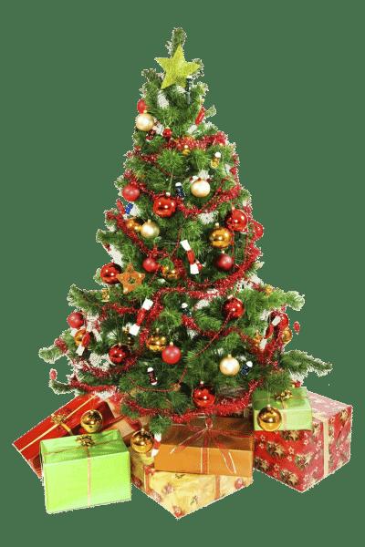 arboles-navidad-png06