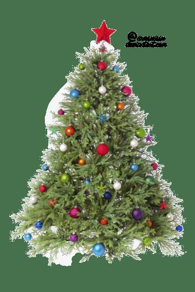 arboles-navidad-png13