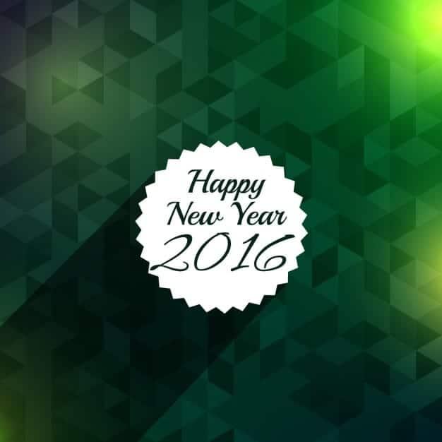 feliz-2016-28