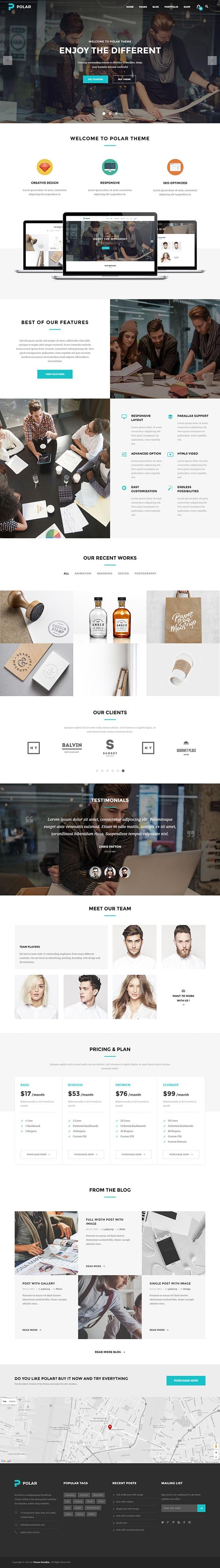 Polar-WordPress-Theme-Screen-Short
