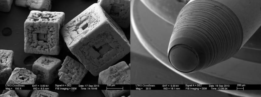 microscopio0