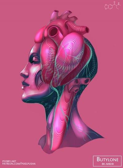 20-drogas-distintas-efectos-ilustraciones-brian-pollett-6