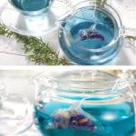tea creativos 5