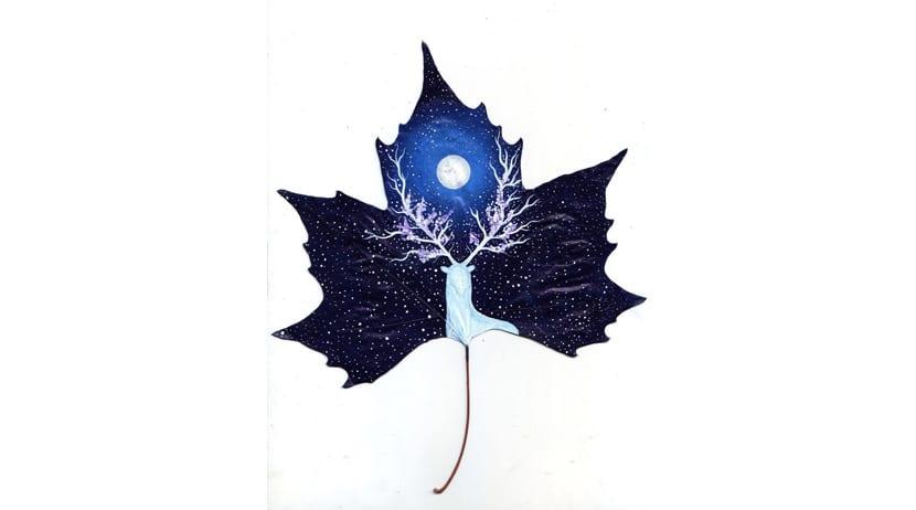 Hojas secas como lienzos para pinturas mágicas y místicas