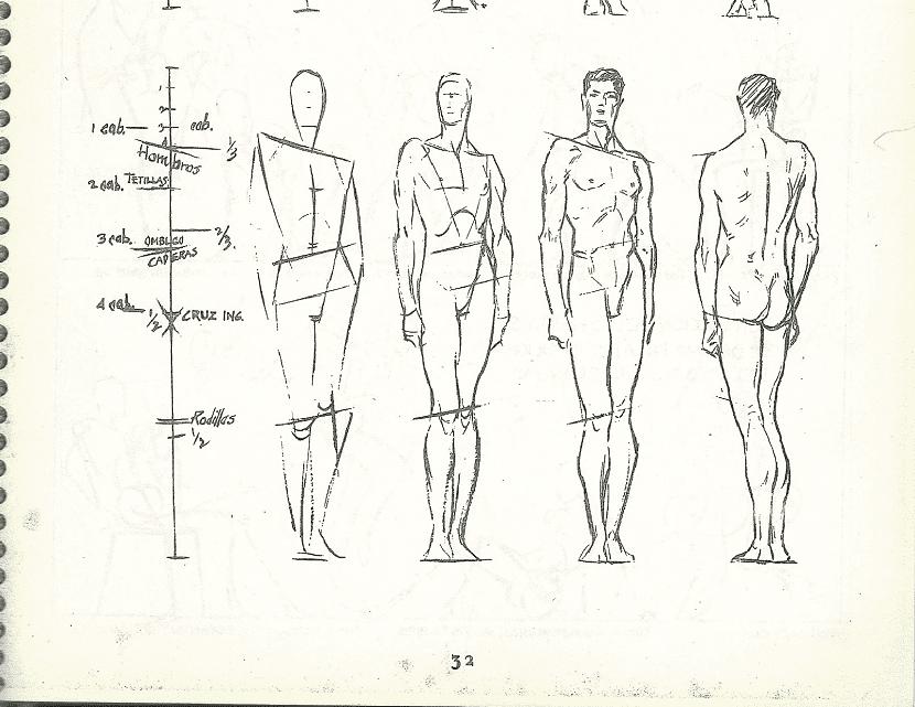 dibujar proporciones del cuerpo humano