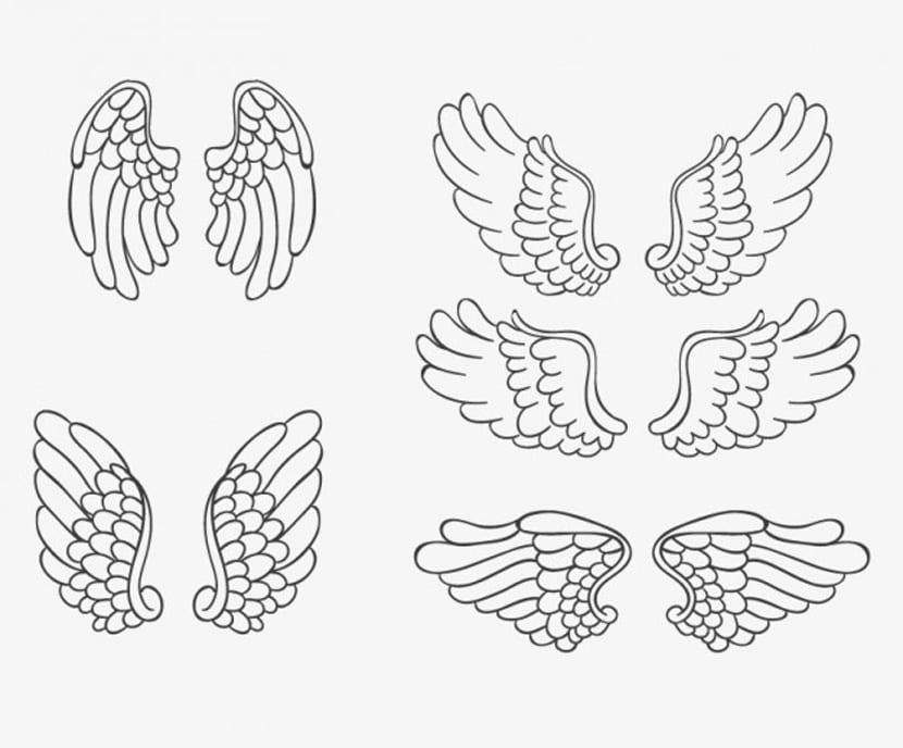 Colección de alas de ángel