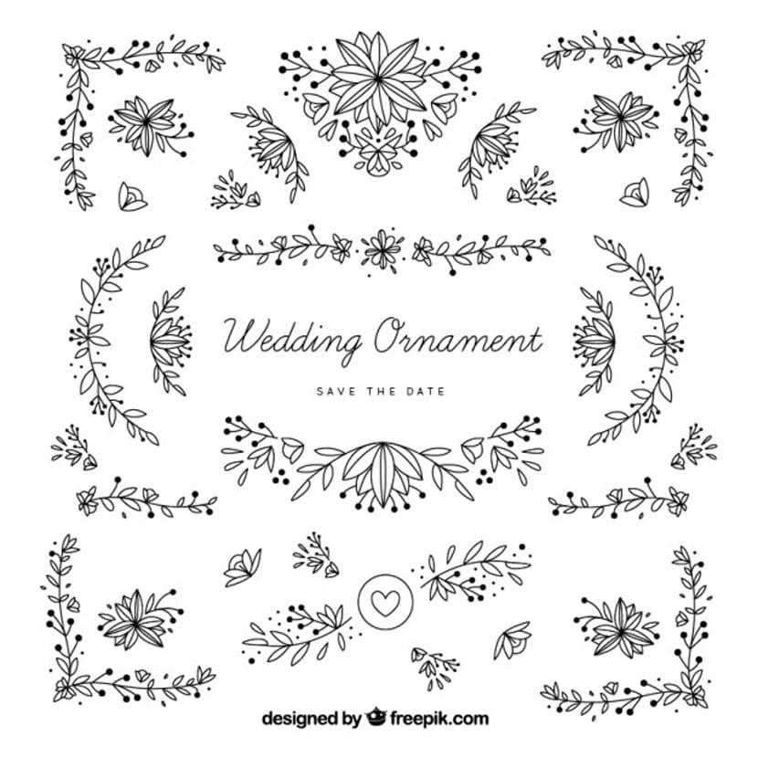 Dibujados a mano adornos de boda con las hojas