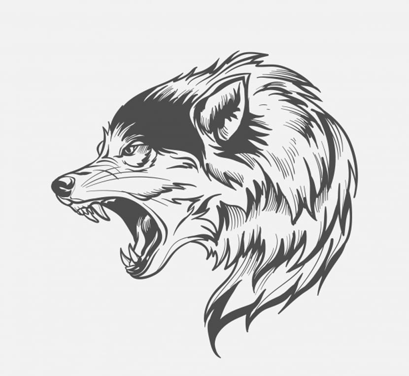Lobo de perfil
