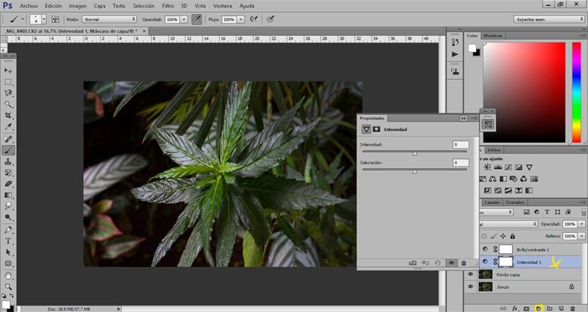 Con la ayuda de photoshop podemos mejorar la intensidad de color de una imagen