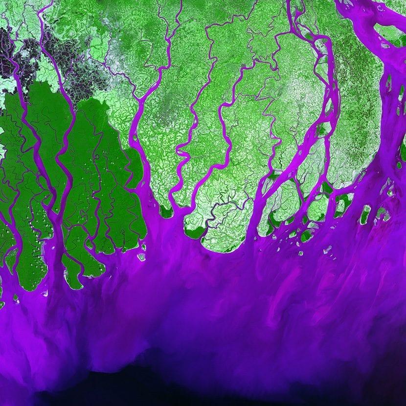 Delta del Rio Ganges