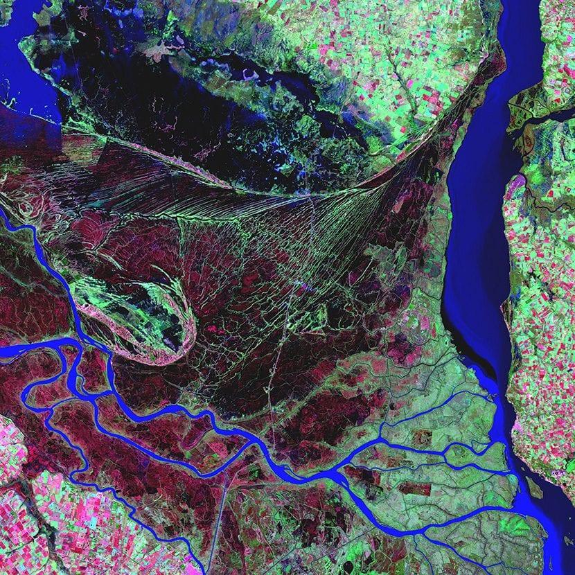 Delta del Rio Paraná