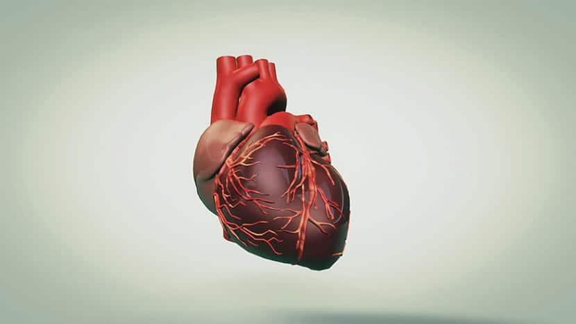 El corazón humano fue representado mediante un símbolo gráfico