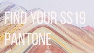 Tu paleta de colores