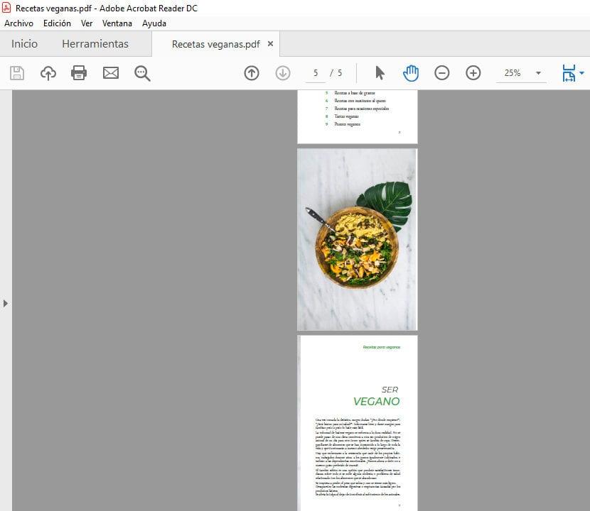 Archivo PDF con páginas separadas
