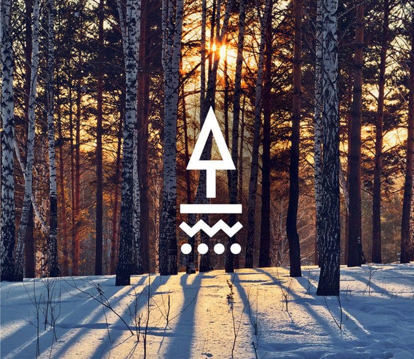Logo Tapped Birch Water