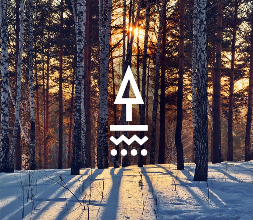 Logo Tapped Birch Water
