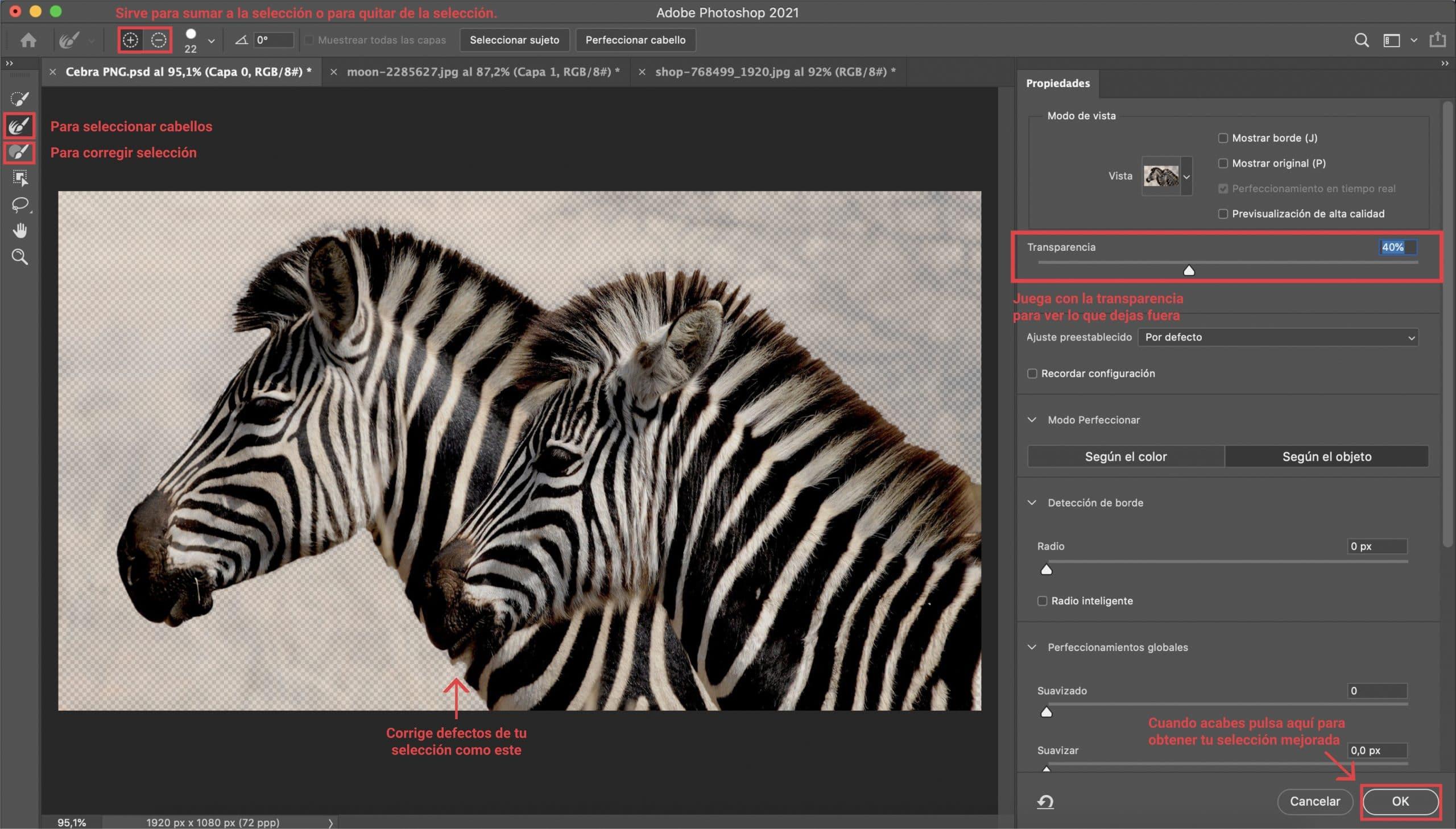 Aplicar máscara de selección para crear PNG con Photoshop