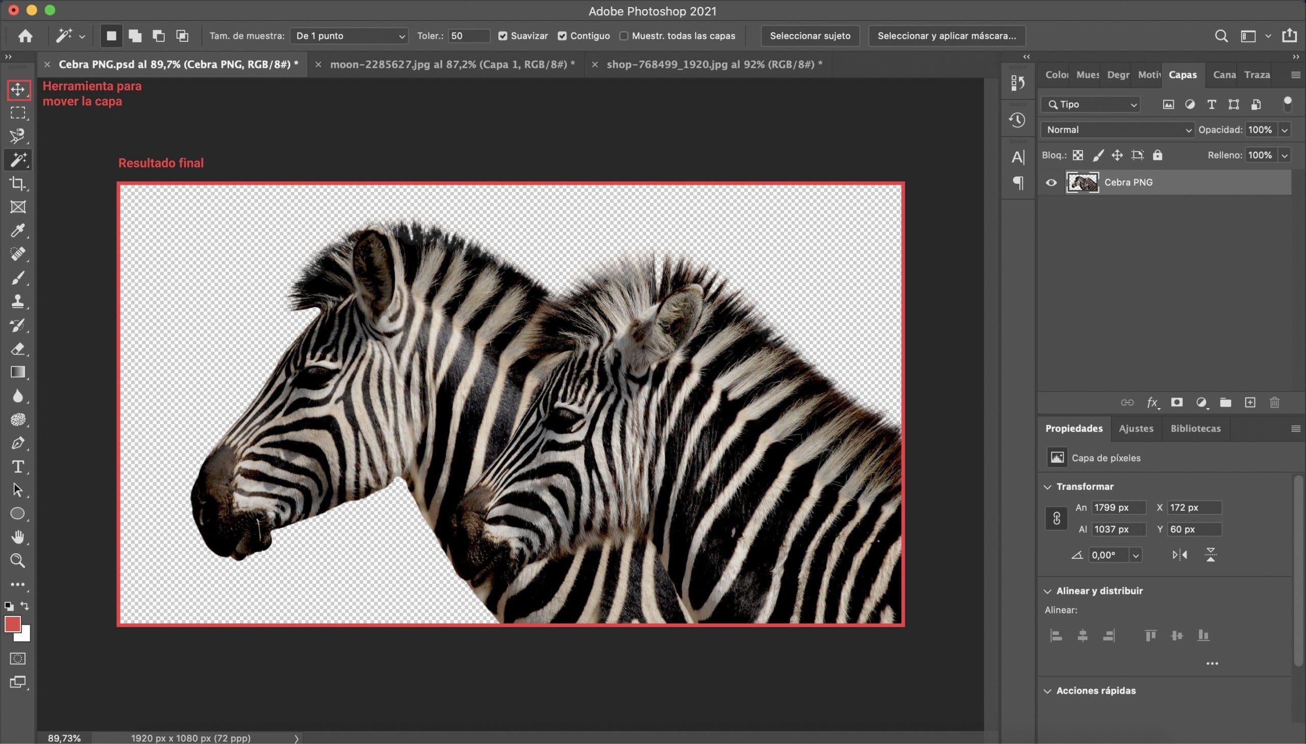Resultado final de la imagen PNG creada con Photoshop