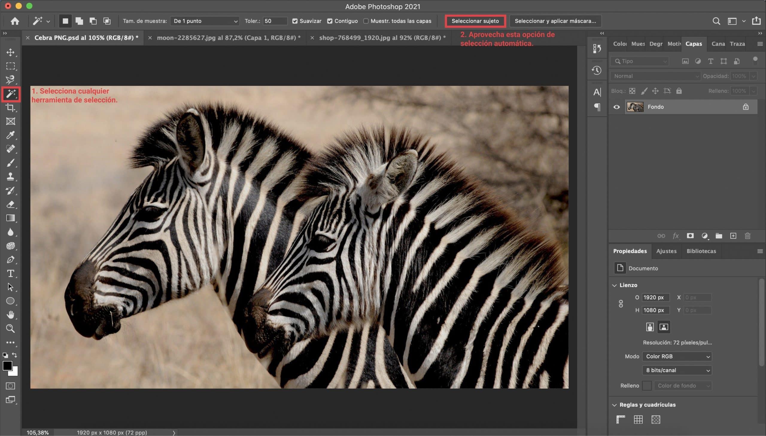 Cómo seleccionar sujeto para crear un PNG con Photoshop