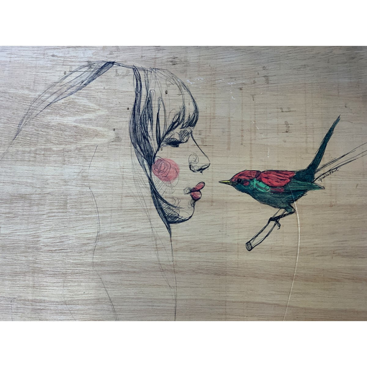 Paula Bonet ilustradores españoles