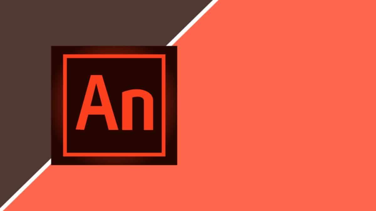 Funciones de Adobe animate CC