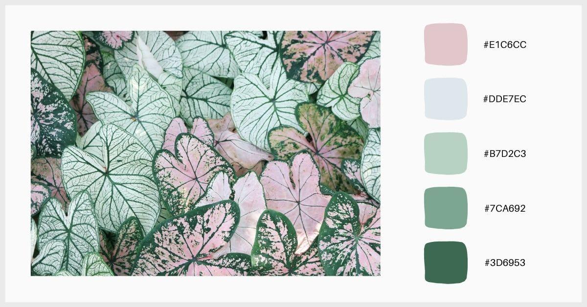 Paleta colores pastel gradiente de verdes