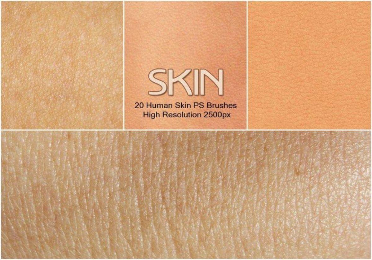 Pinceles de piel humana